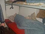 Így kell szépen aludni kisgyerekek