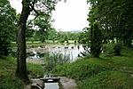 A forrás táplálta kis tó