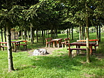 Piknikezőhely