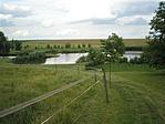Bölényfarm