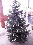 Józsai karácsonyfa