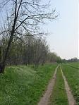 Kényelmes gyalogút