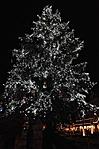 a város karácsonyfája esti díszben