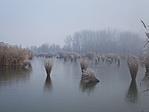 Jön a tél, kezd befagyni a tó vize :)