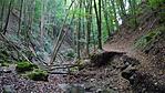 Apátkúti-völgy (fotó: Tüdő)