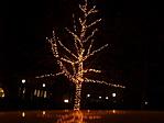 ez nem karácsonyfa ;-)