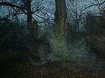Sejtelmes köd