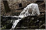 A forrás vize